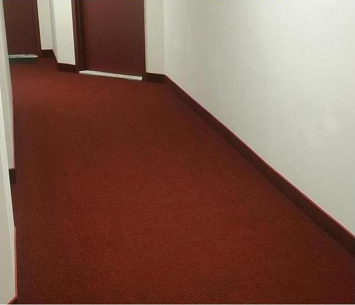 Bel Air Soaked Commercial Carpet Before