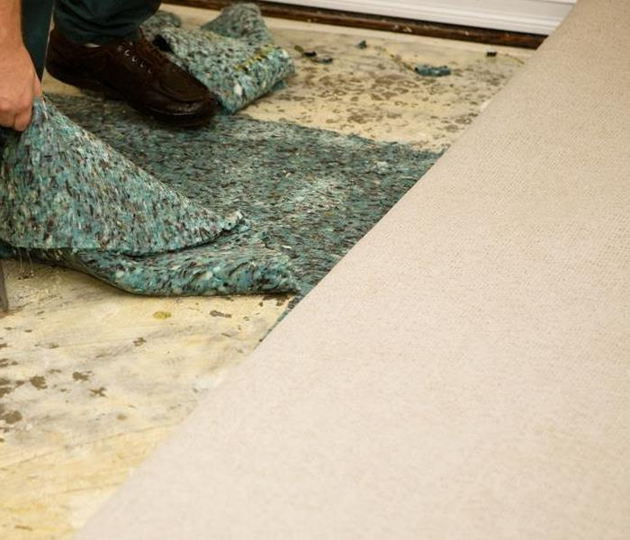 Commercial Is Carpeting Salvageable After Commercial Water Damage in West Hollywood?