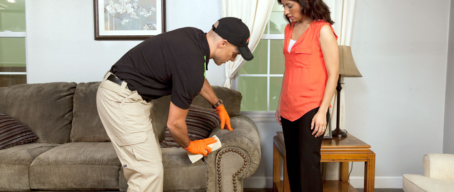 Bel Air, CA carpet upholstery cleaning