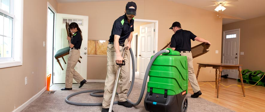 Bel Air, CA cleaning services